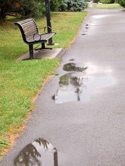Rain at the park