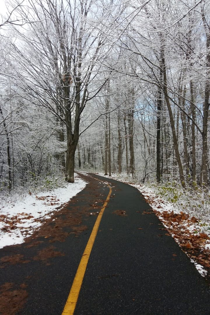Right after the first snow on November 7, Experimental Farm Pathway, Ottawa